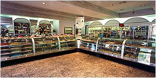Mozzicato Italian Bakery & Pastry Shop